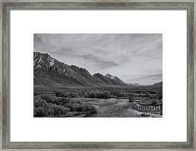Free Water Framed Print
