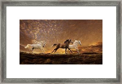 Freed Spirits Framed Print by Melinda Hughes-Berland