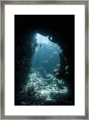 Freediver Framed Print by Ethan Daniels