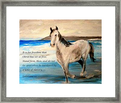 Freedom Framed Print by Amanda Dinan