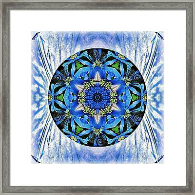 Freedom And Love Framed Print by Alicia Kent