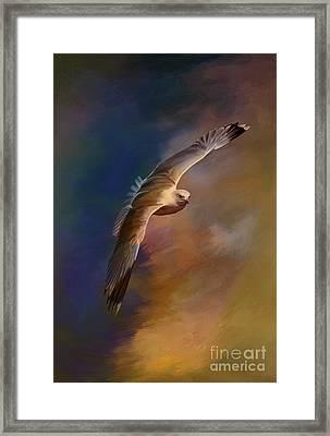Freedom....  Framed Print by Andrzej Szczerski