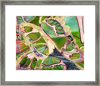 Freedom Butterfly Framed Print
