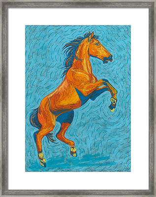 Freedom Fighter Framed Print by Cynthia Sampson