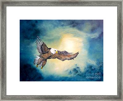 Freedom Flyer Framed Print