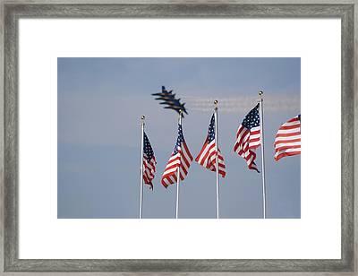 Freedom Flying Framed Print