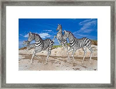 Freedom Fun Forever Framed Print by Betsy Knapp