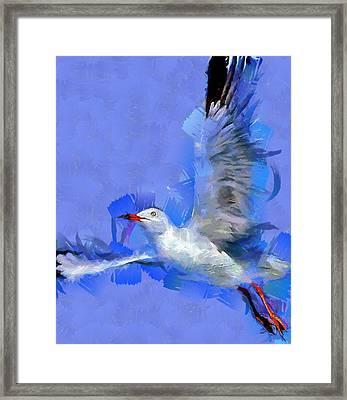 Freedom Framed Print by Georgi Dimitrov