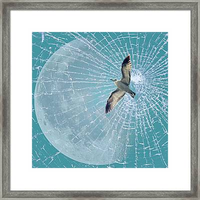 Freedom Framed Print by Heike Hultsch