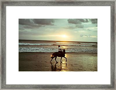 Framed Print featuring the photograph Freedom by Lana Enderle