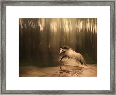 Freedom Of The Forest Framed Print