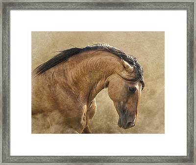 Freedom Framed Print by Ron  McGinnis