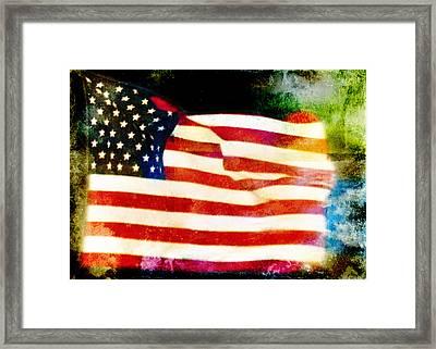 Freedom Framed Print by Steven  Michael