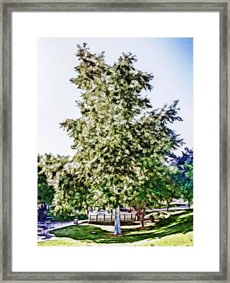Freedom Tree Framed Print