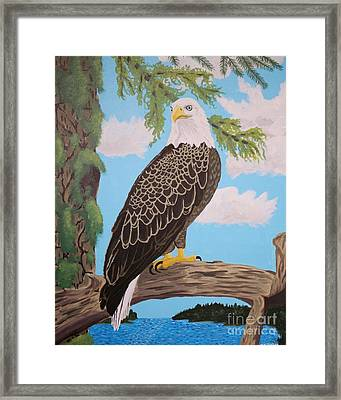 Freedom's Pride Framed Print by Vicki Maheu