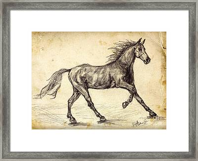 Freehand Graphite Horse Study Framed Print by Ginette Callaway