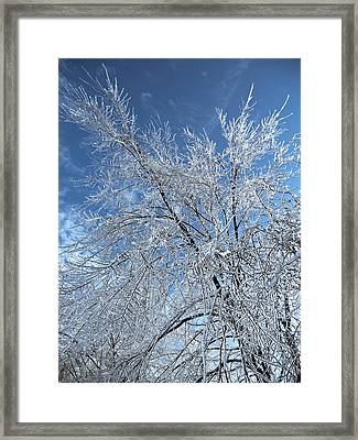 Freezing Rain ... Framed Print by Juergen Weiss