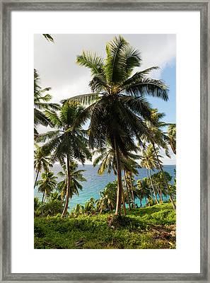 Fregate Island, Seychelles Framed Print by Sergio Pitamitz