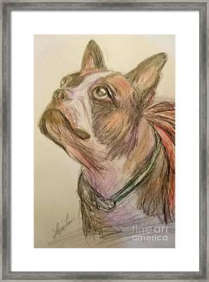 French Bull Dog Framed Print by Lyric Lucas