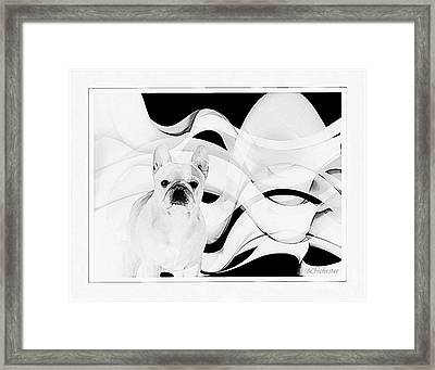 Framed Print featuring the painting French Bulldog by Barbara Chichester