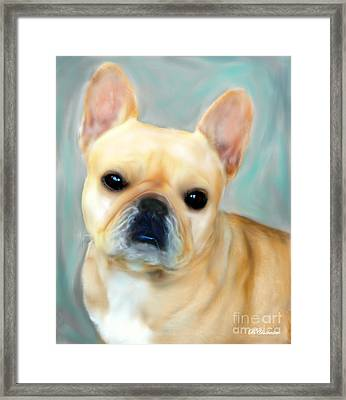 French Bulldog Mystique D'or Framed Print by Barbara Chichester