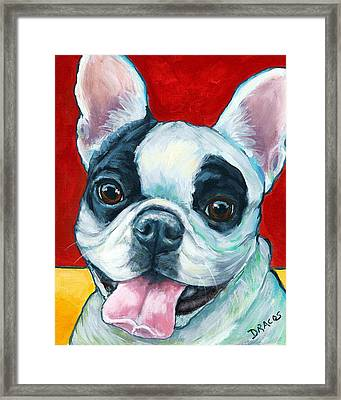 French Bulldog On Red Framed Print by Dottie Dracos