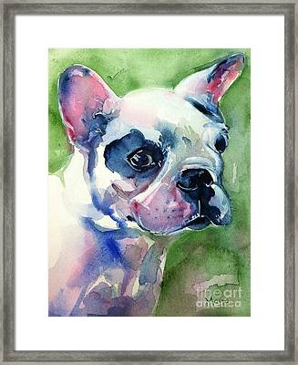 French Bulldog Painting Framed Print by Maria's Watercolor