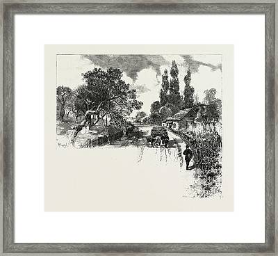 French Canadian Life, An Old Orchard, Canada Framed Print