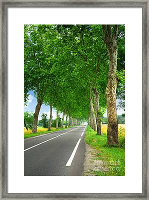 French Country Road Framed Print by Elena Elisseeva