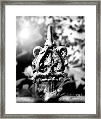 French Iron Framed Print by Perry Webster