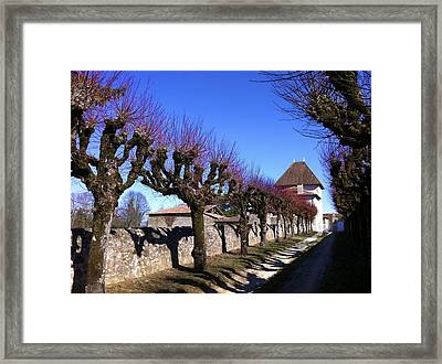 French Laneway Framed Print by Marty  Cobcroft