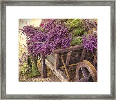 French Lavender Cart Framed Print by Phyllis Peterson