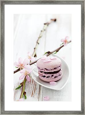 French Macaroons Framed Print