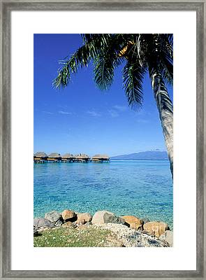French Polynesia Tahiti Moorea Framed Print by Anonymous