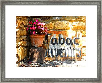 French Tabac Framed Print by Lauren Leigh Hunter Fine Art Photography