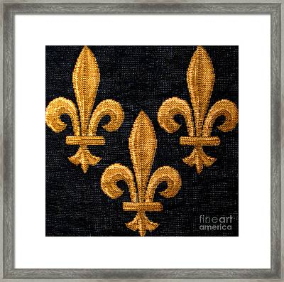 French Tapestry Framed Print by Patricia Januszkiewicz