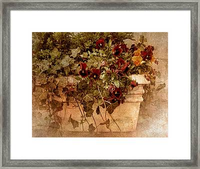 Fresco Framed Print by Jessica Jenney