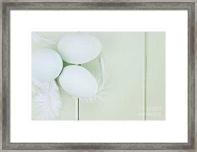 Fresh Ameraucana Eggs And Feathers Framed Print by Stephanie Frey