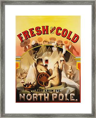 Fresh And Cold Direct From The North Pole Framed Print by Bill Cannon