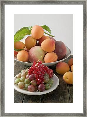 Fresh Berries, Apricots And Peaches Framed Print