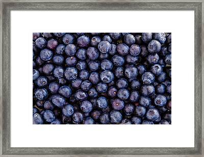 Fresh Blueberries Framed Print by Teri Virbickis