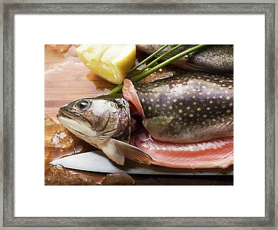 Fresh Brook Charr With Lemon Framed Print
