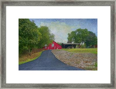 Fresh Country Charm Framed Print by Liane Wright