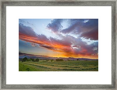 Fresh Cut Hay And Colorful Sky Framed Print by James BO  Insogna