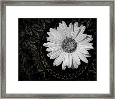 Fresh Cut Framed Print