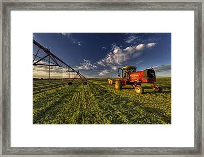 Fresh Cut Framed Print by Mark Kiver