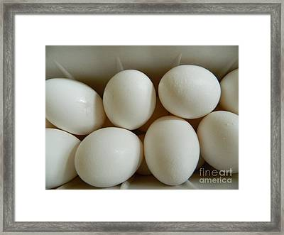 Fresh Eggs Framed Print by Emmy Marie Vickers