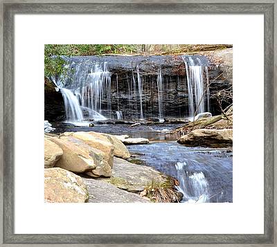 Fresh Flow  Framed Print