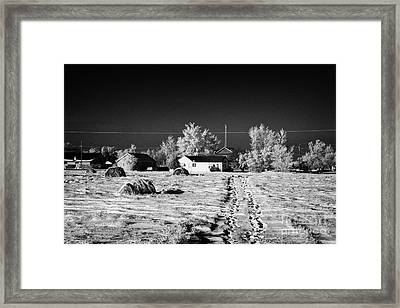 fresh footprints crossing deep snow in field towards small rural village of Forget Saskatchewan Cana Framed Print
