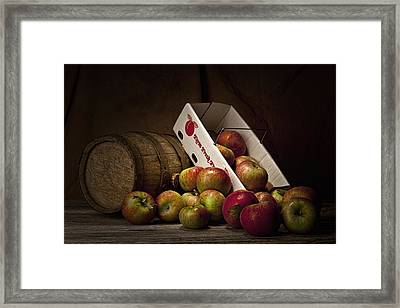 Fresh From The Orchard I Framed Print by Tom Mc Nemar